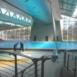 Indoor swimming pool area with a big swimming pool
