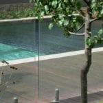 A tree near the swimming pool